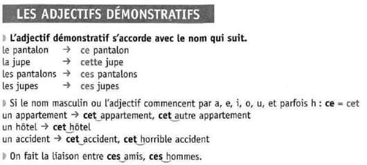 Указательные местоимения во французском
