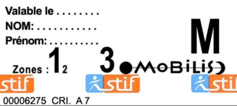 Ticket Mobilis на весь день