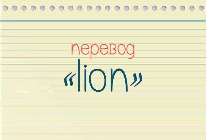 Как переводиться lion?